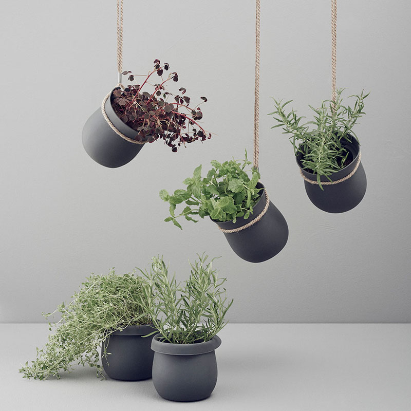 53 indoor garden idea hang your plants from the ceiling for Ways to hang plants inside