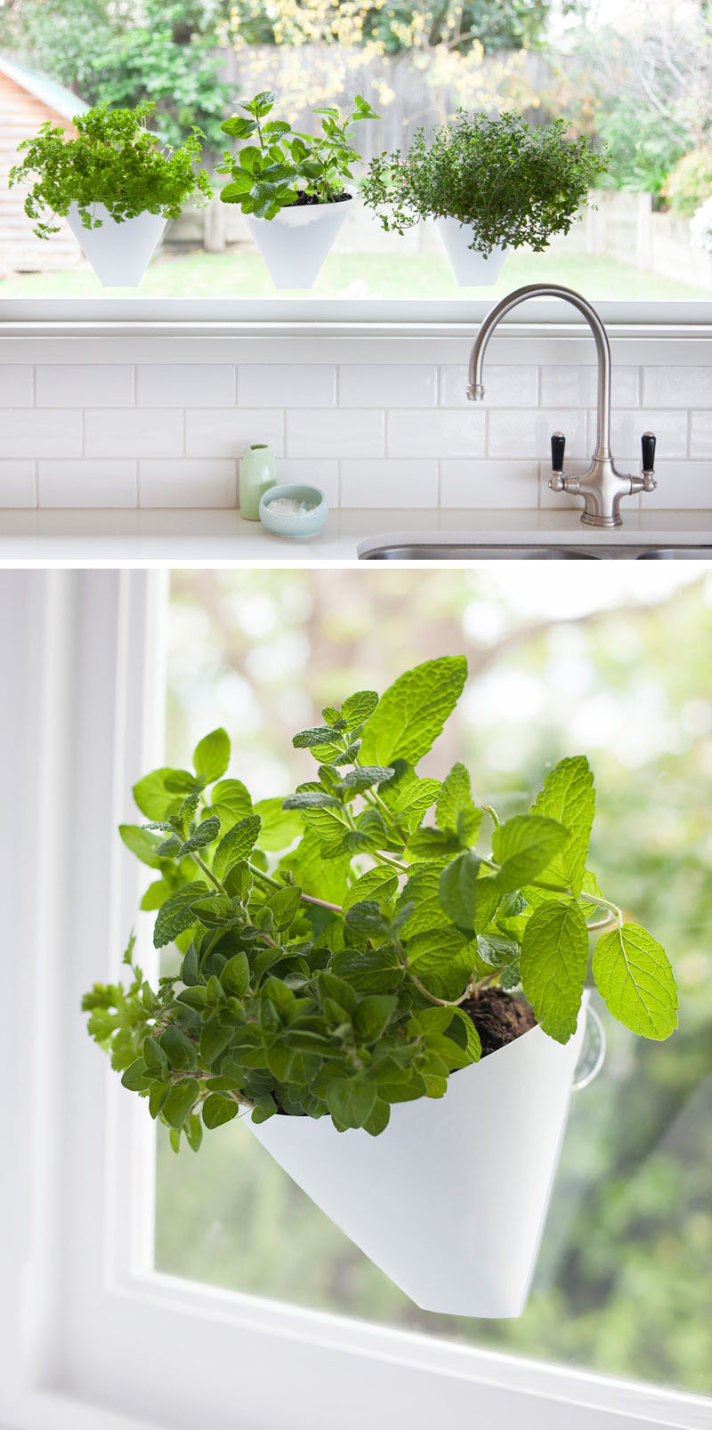 Hang Your Plants From The Ceiling